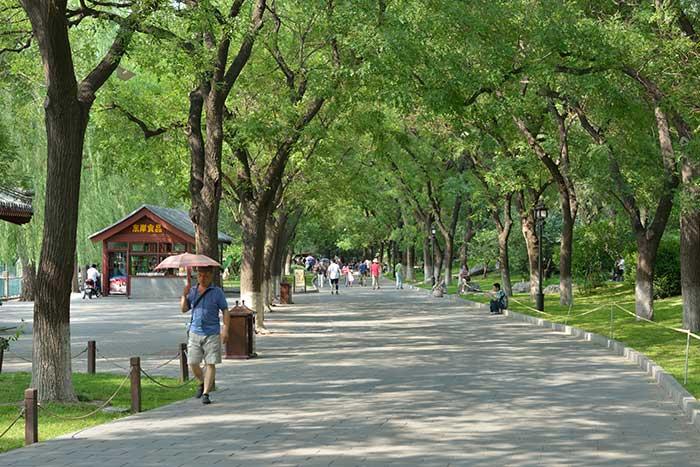 Guangxi4.jpg